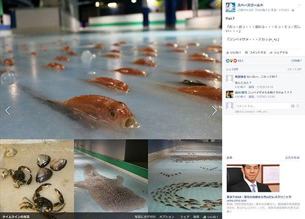 魚の氷漬けアイスリンク2