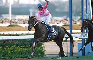 サクラローレル 1996年有馬記念...