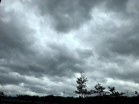 12月22日(木) 曇りのち雨 | WA...