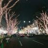 都内クリスマスイルミネーション巡りの画像