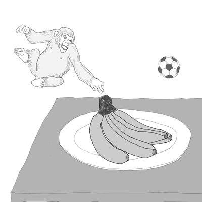 気が狂う go bananas 熱狂する 狂ったようにバナナを欲しがるの記事に添付されている画像