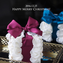 今日はクリスマス★の記事に添付されている画像
