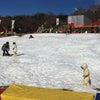 プレジャーフォレストで雪遊び&攻略法の画像