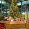 丸の内・中通りクリスマスイルミネーションの画像