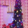 孫たちと Merry Christmas ♪の画像