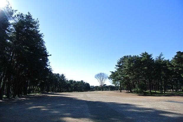 水海道GC No.14
