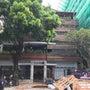 カンボジアで働くセラ…