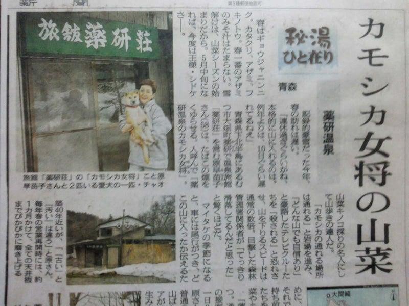 「薬研荘 女将」の画像検索結果
