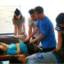解剖学生理学(人体の…