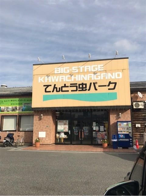 虫 大阪 てんとう パーク