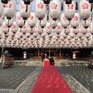 姫路護国神社新春ブライダルフェア開催中の画像