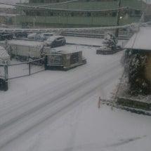 ユニコーン  雪が降…