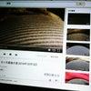 胎動動画の画像