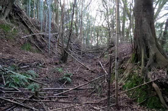 【写3】亀井山城