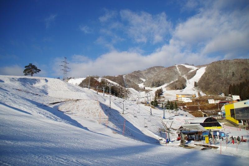 スキー 場 ダイナランド