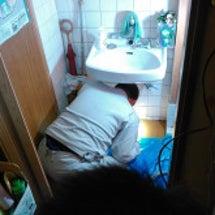手洗い器の水が引かな…