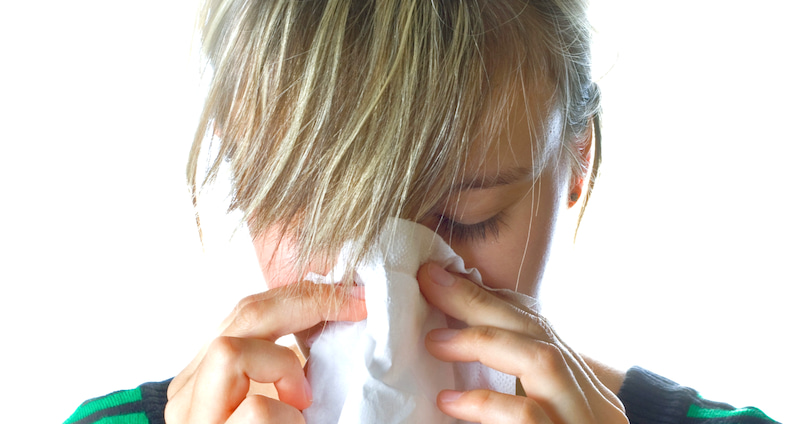 克服 猫 アレルギー