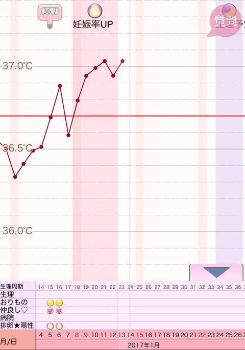 妊娠した時 ブログ 高温期4日目