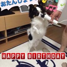 お誕生日☆3歳らいむ