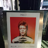 "「SUKITA meets BOWIE ""SPEED of LIFE""」鋤田正義写真展の画像"