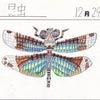 【たくみ大図鑑129】265 チョウトンボ、266 アンタエウスオオクワガタの画像