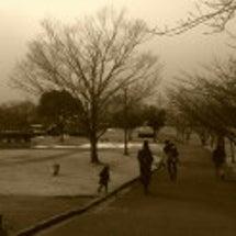 南部丘陵公園散歩