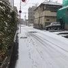 仙台も雪ですねの画像