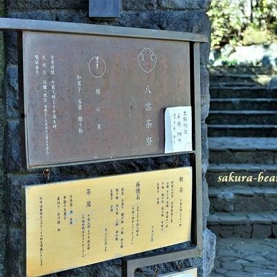 贅沢な時間は紹介制の和食料理で『八雲茶寮』の記事に添付されている画像