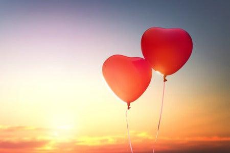 「愛」の画像検索結果