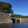 皇居散歩と銀ブラの画像