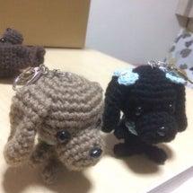 編み編みの晴と亜喜♪