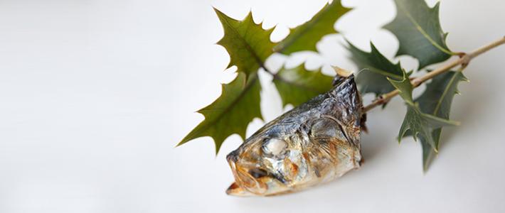 木~冬~魚~弱~の記事より