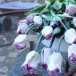 2月、3月お花教室ご…