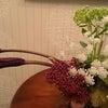 たまには花を。の画像