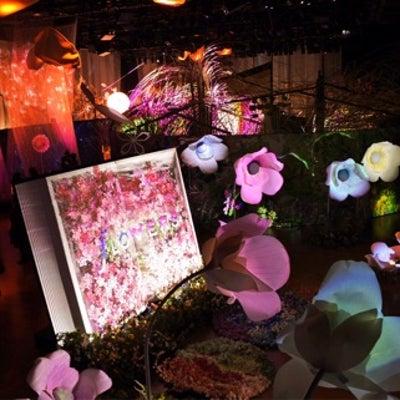 日本橋で一足早いお花見@FLOWERS by NAKEDの記事に添付されている画像