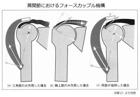 「肩関節 フォースカップル」の画像検索結果
