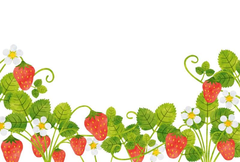 苺 Rkrkの植物いろいろ たま にイラスト