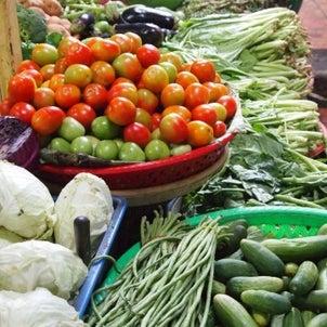 ビタミンの働き・欠乏症・含有食品について 1の画像