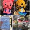 久しぶりにレッスンのない日曜、 三島大社にお詣りしてきました♪の画像