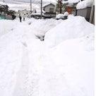 豪雪です。の記事より