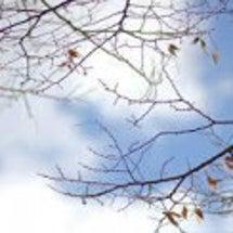 冬の「乾燥肌」を守る…