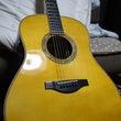 ギターを買ってきた。