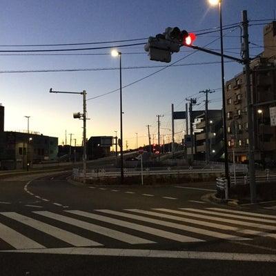 やっちゃった!!多摩川で鯉釣りの記事に添付されている画像