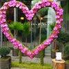 南青山バレンタインの画像