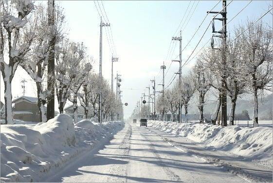勝山市の冬の朝