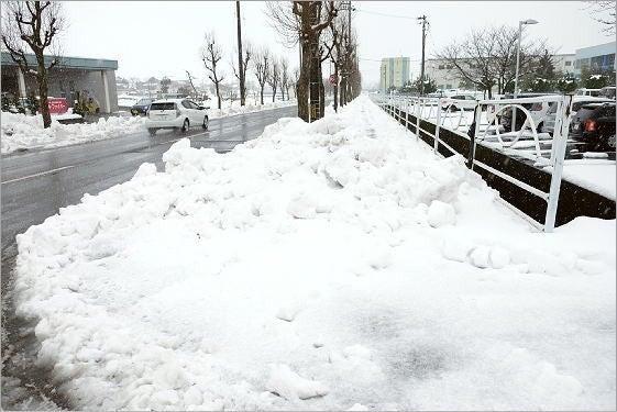 北陸特有の水を多く含んだ雪