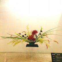 ≪山形屋玄関花のご紹…