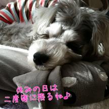 ふんわりブログ♥