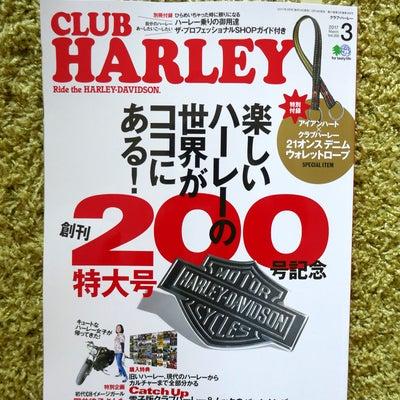クラブハーレー発売中!の記事に添付されている画像