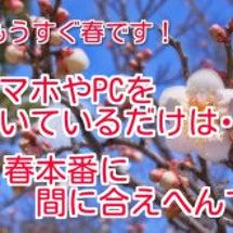 もうすぐ春ですね!